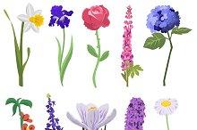 Beautiful watercolor flower set