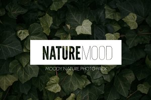 Photo Pack: Nature Mood