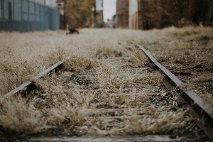 Abandoned Industrial Train Tracks