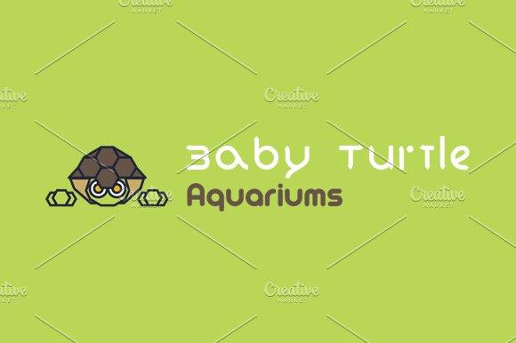 Baby Turtle Aquariums