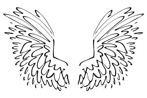 Cartoon Wings