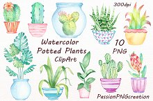 Watercolor potted plants clipart