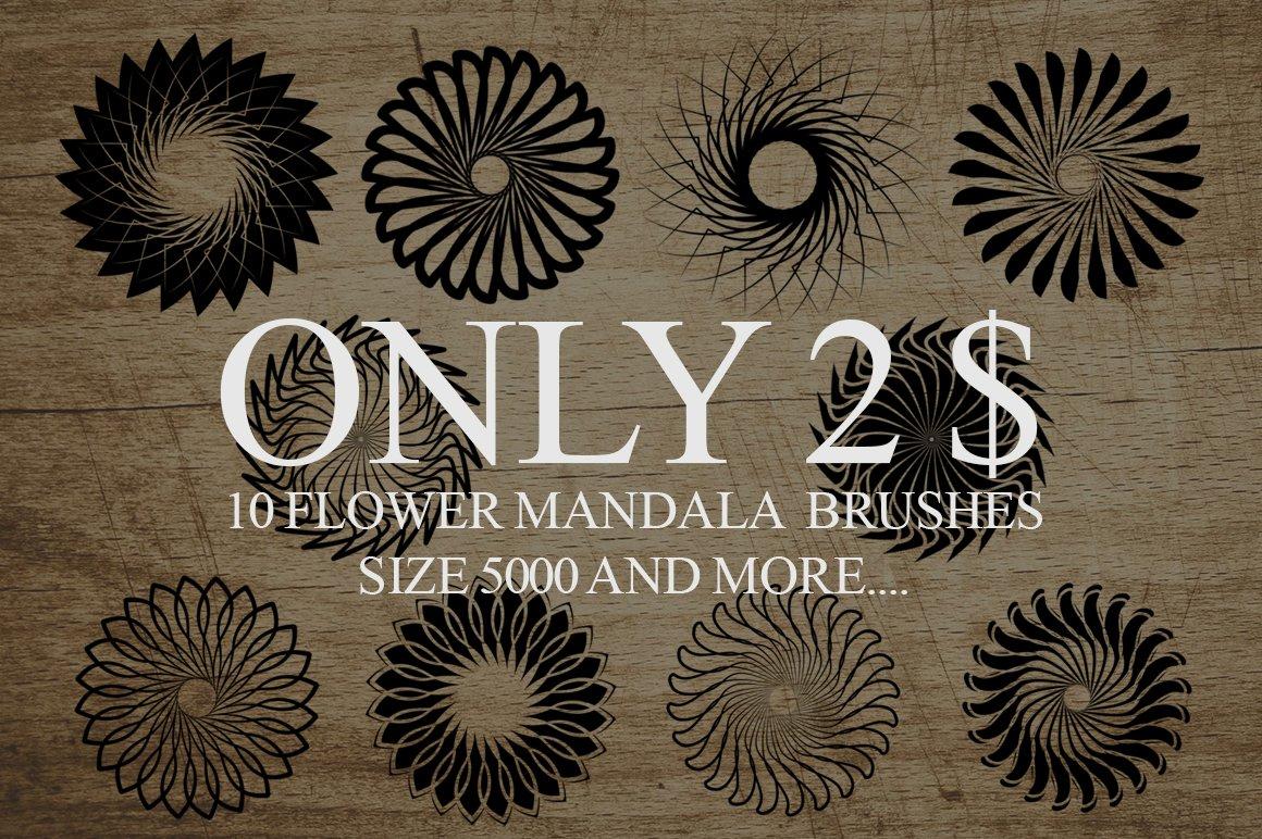 10 Mandala Flowers Brushes