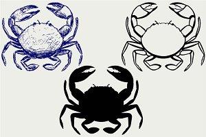 Crabs, top view SVG