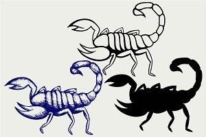 Emperor Scorpion SVG
