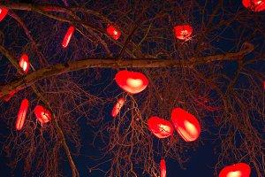 Tree of love...
