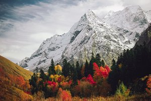 The mountain autumn landscape.
