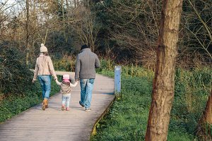 Family walking together and holding hands in the forest