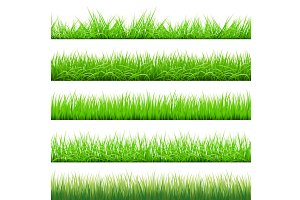 Green Grass Big Set, vector