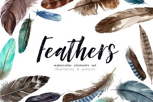 Feathers. Watercolor elements set