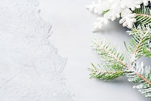 Christmas textured background with fir tree snow branches