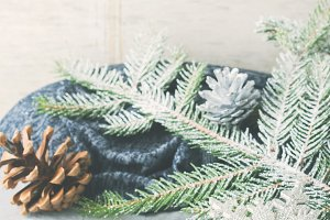 New year winter background with fir tree branches