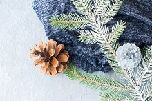 Christmas winter background with fir tree branches. Vertical