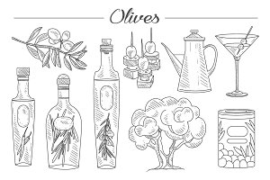 Olive Oil and Branch Hand drawn