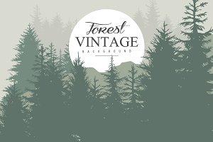 Vintage Pine Forest