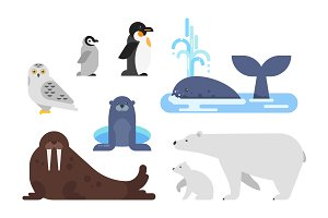 Flat arctic animals