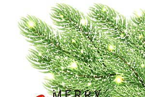 Christmas background fir branches