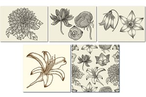 flowers - hand drawn collection
