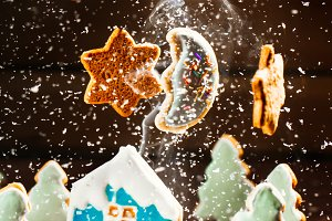 winter landscape with houses of cookies and Christmas trees moon stars