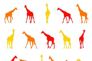 African Animal Silhouettes.