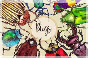 Watercolor Beetles Clipart & Print