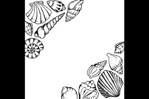 Sea shells hand drawn frame vector