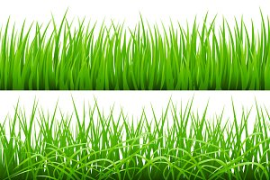 set Backgrounds Of Green Grass,