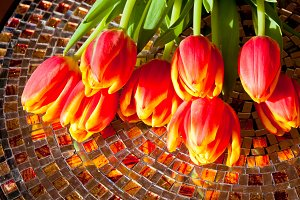 Red tulips  on mosaic table