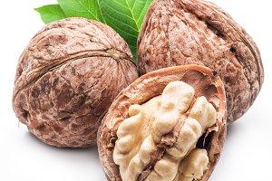 Walnut and walnut kernel isolated