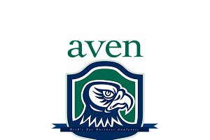 Aven Bird's Eye Business Logo