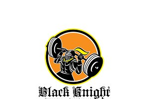 Black Knight Vitamins Logo