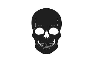 Black skull illustration. Vector