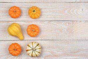Gourds Pumpkins Overhead