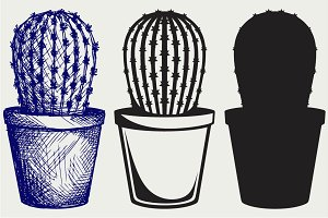 Cactus in a pot SVG