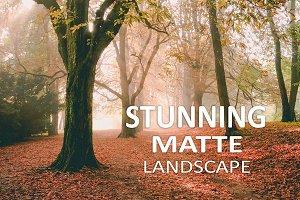 10 Stunning Matte Landscape Presets