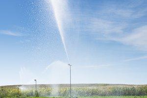 Watering sprinklers on the field