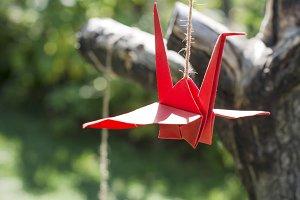 Origami cranes in the garden