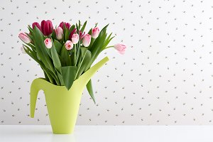 Spring tulips in a watering can