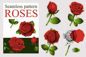 Seamless red rose flower