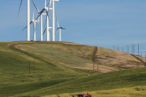 Wind turbines in rural area