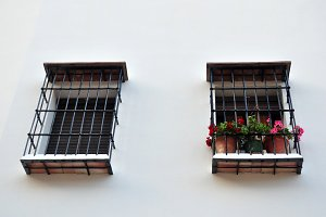 two windows, fences and flowers