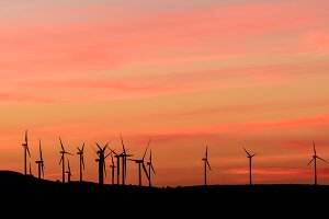 Sunset at the wind farm