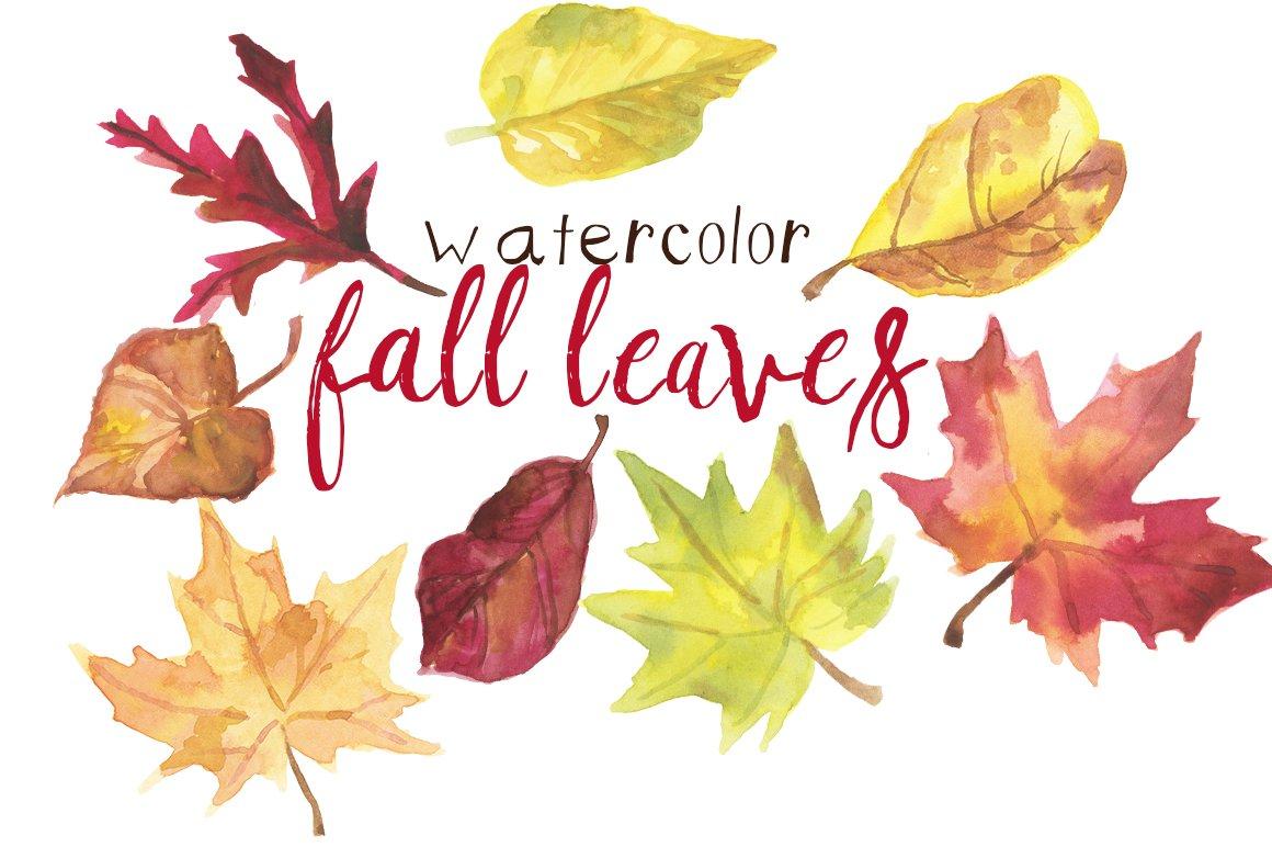 Watercolor Fall Leaves ~ Illustrations ~ Creative Market