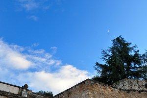 wall, tree, blue sky and moon