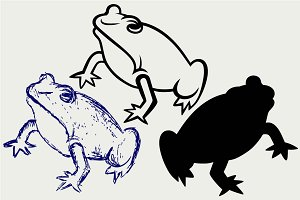 Swamp toad SVG