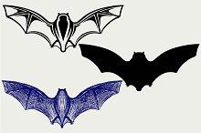 Bat in flight