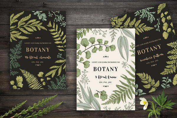 Botanical cards. Set.
