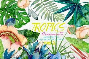 Tropics Watercolor Floral Clipart