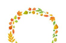 A wreath of autumn leaves