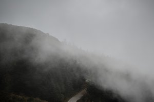 Foggy mountain road